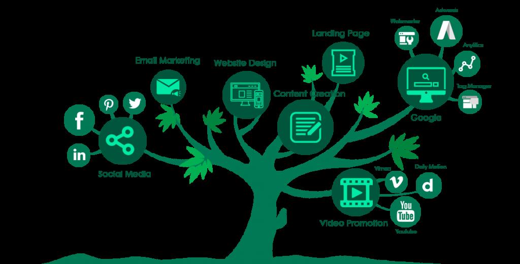 Web Design Ealing